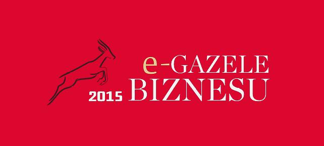 e-gazele_biznesu_blog_ak74